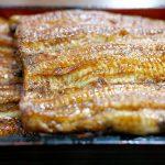 japanese-food-1865274_640